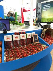 Seminis e Bayer na Hortitec 2019 Tomate Coronel