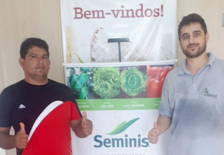 Pimentão da Seminis se sobressai perante concorrentes em Boa Vista-PR